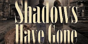 shadows have gone lissa bryan