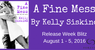 A Fine Mess Banner Kelly Siskind