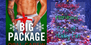 Big Package by Opal Carew