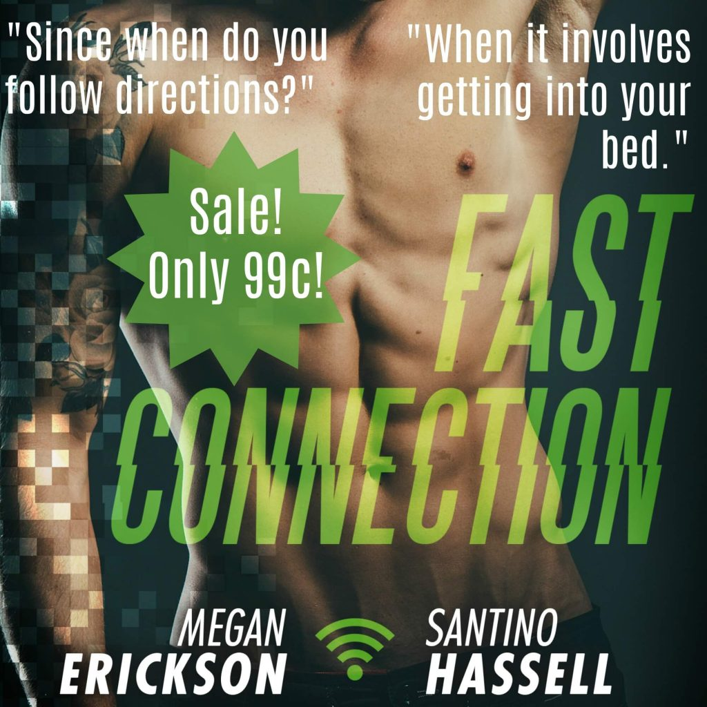 Fast Connection by Megan Erickson and Santino Hassell